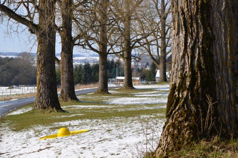 Winter Jahreszeitenfoto